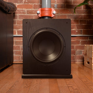 "Windsor 10"" Subwoofer no grill"